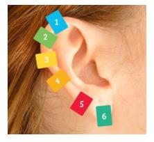 orecchie punti